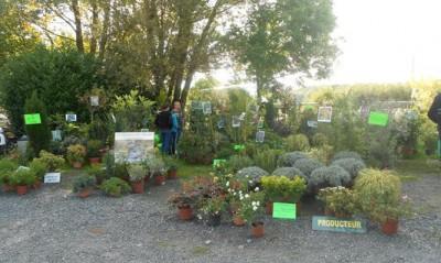 Stand aux jardi'Folies du Fraysse en 2015