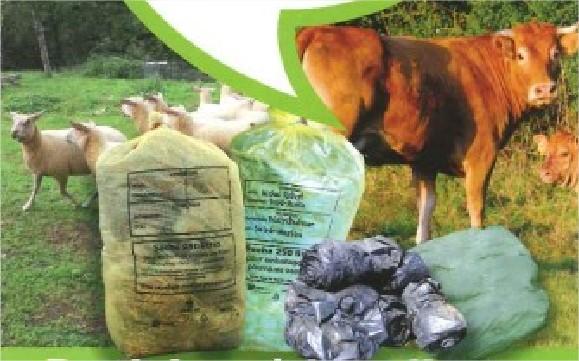 Collecte des plastiques agricoles usagés