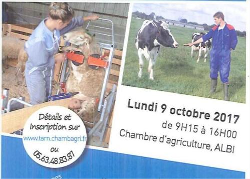Ateliers de la Chambre d'Agriculture autour de l'élevage