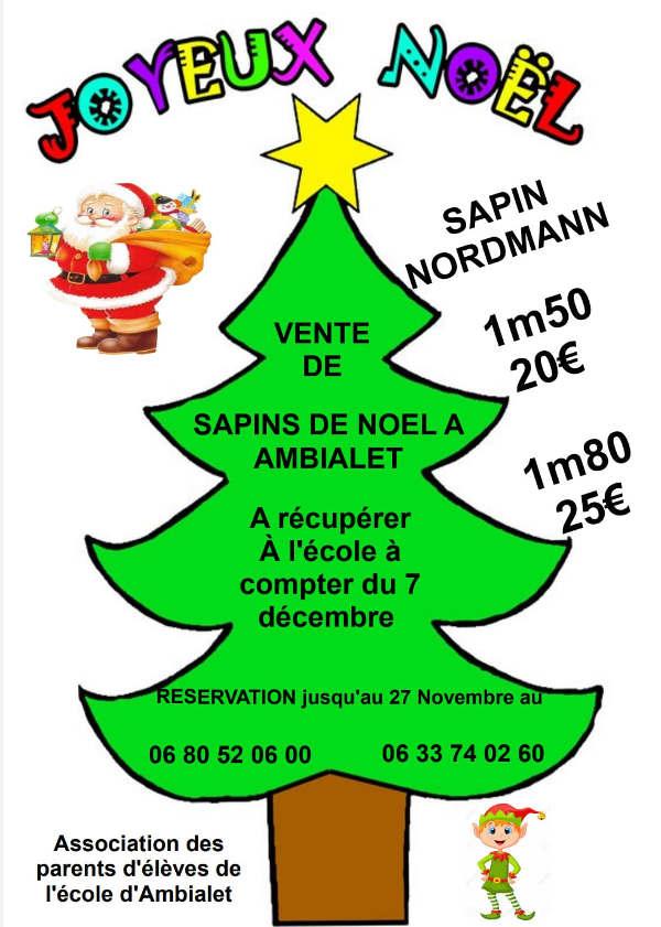 Vente de sapins de Noël à Ambialet