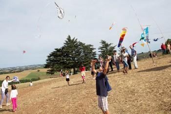 Cerfs volants à Terre en fête 2015 à Alban © D. Delpoux