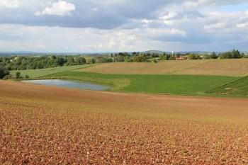 Paysage agricole à Bellegarde